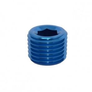 """Tampão para Rosca NPT 1/4"""" - Azul"""